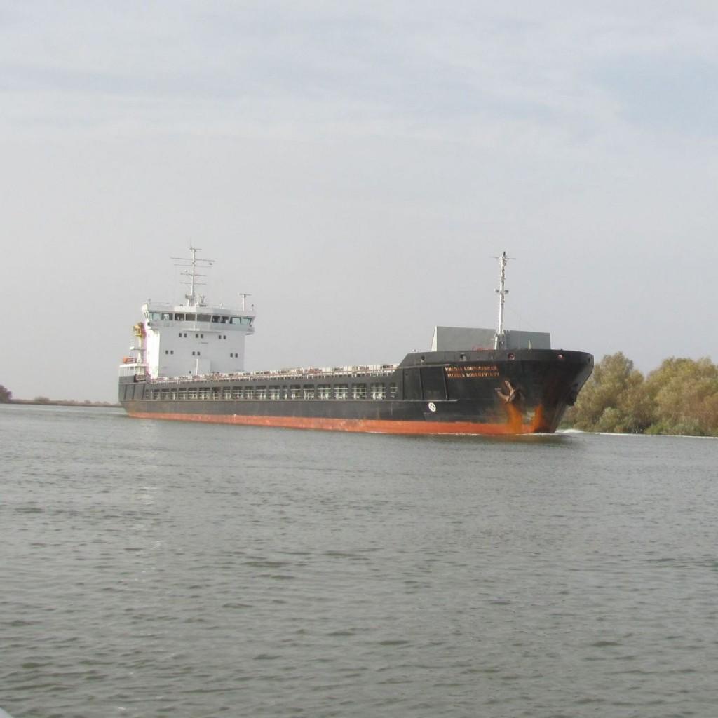 В Бессарабии поднимается Дунай