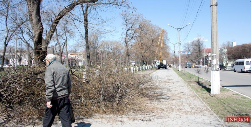 Обрезка деревьев в исполнении измаильского ЖКХ