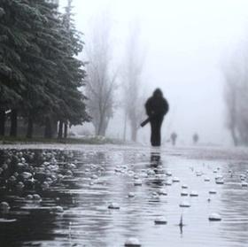 дождь Погода на сегодня: пасмурно, возможен дождь