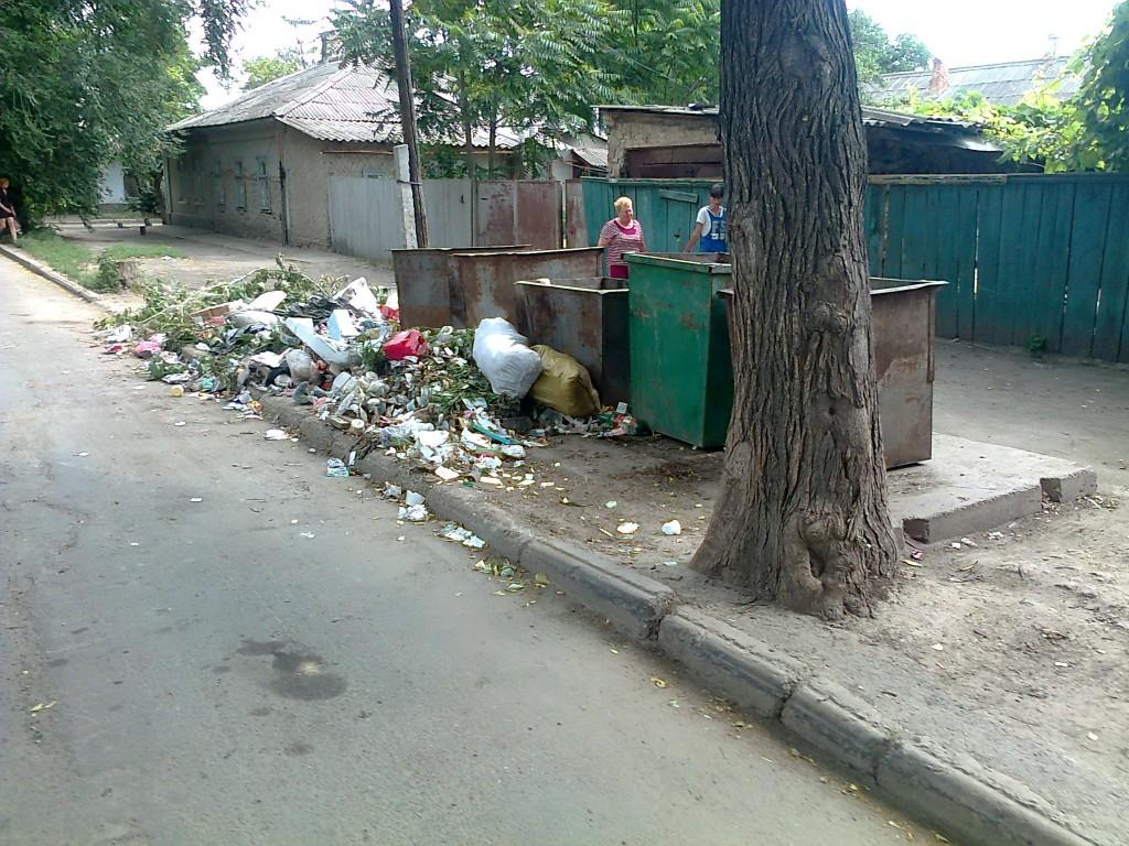 Измаил, центр: мусор, равнодушие чиновников, бомжи, крысы и бездомные собаки! (ФОТО)