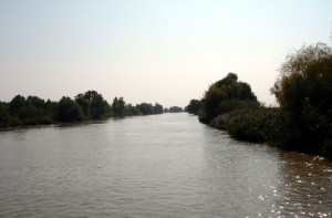На Дунае утонул 8-летний мальчик