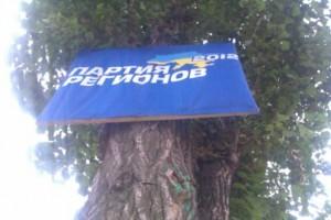 Партия Регионов добралась и до деревьев.