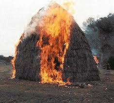 Измаильский р-н. В Лощиновке сгорело 2,5 тонны сена.