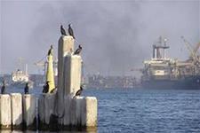 Ильичевский порт завершил модернизацию портальных кранов