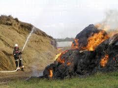 На Одещине сгорело 5 тонн урожая