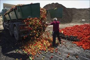 Бессарабия готовится к продовольственному кризису?