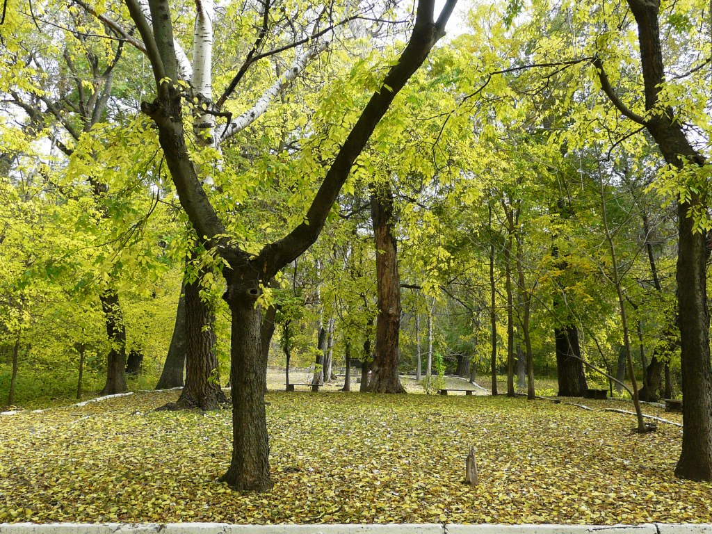 Яркие краски бессарабской осени. ФОТОрепортаж
