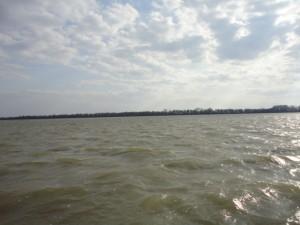 Повысился уровень воды в реке Дунай