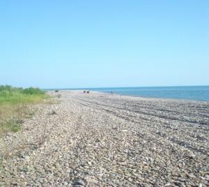 Б.-Днестровский: суд вернул землю общине стоимостью 17 млн. грн.
