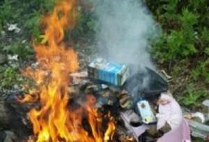 Арциз:  неизвестный поджег мусор