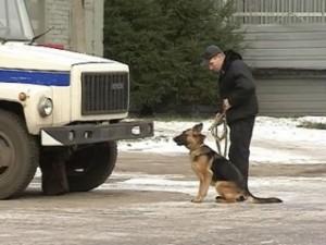 В Одесской области 150 человек с собаками ищут пропавшего ребенка