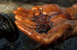 Прокуратура занялась утечкой нефти в Дунае