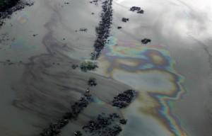 Когда Дунай будет чистым: очередное нефтяное пятно