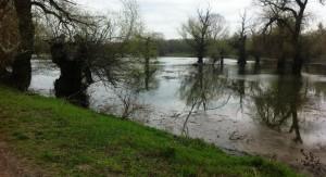 В Вилково сохраняется превышение опасного уровня воды