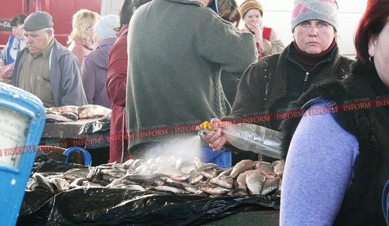 клев рыбы в одессе на рыбхозе