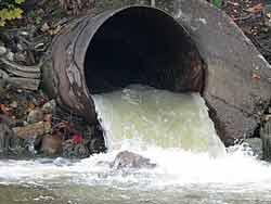 Дунай опять загрязнили вредными материалами