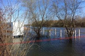 Уровень воды в Днестре по-прежнему растет