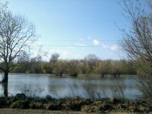В Дунае начал падать уровень воды