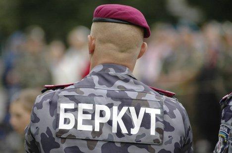 "Измаил усиленно отрабатывает ""Беркут"""