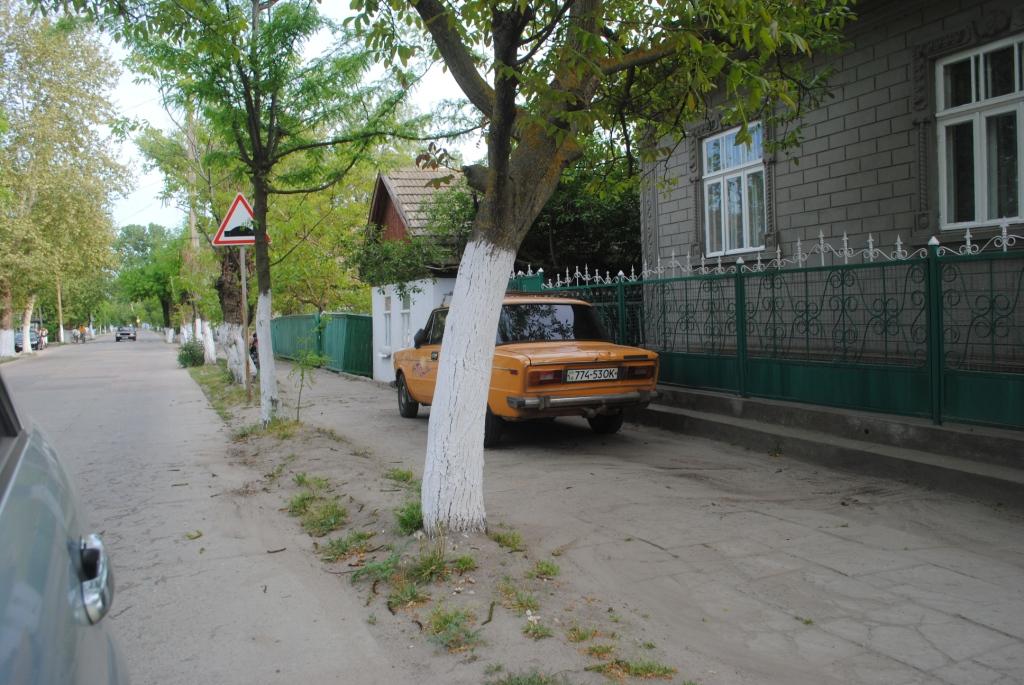 """Житель города Вилково в рубрике """"Я паркуюсь как дурак"""""""