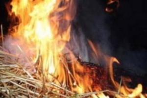 В Килийском районе горела солома