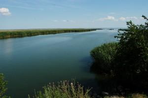 Вода в Дунае будет подниматься всю неделю