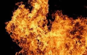 В Измаильском районе полыхал большой пожар