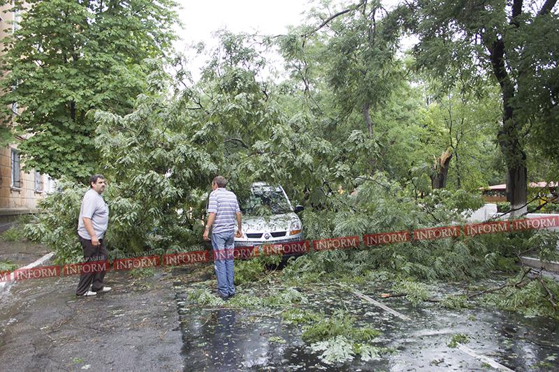 15 минут ветра с дождем в Измаиле: поваленные деревья, разбитые авто (фото)