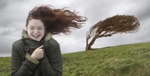 В Бессарабии целый день сильный шквальный ветер