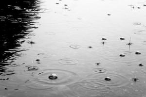 Всю неделя в Бессарабии будет холодной и дождливой