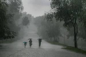 В Бессарабии пока сухо, но скоро снова дожди