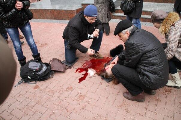 В Хмельницком силовики расстреляли из АКМ протестующих (фото, видео)