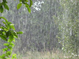 97826308_4497432_dojdi_2-300x225 В Одесской области сегодня будет тепло, а по Украине возможны дожди