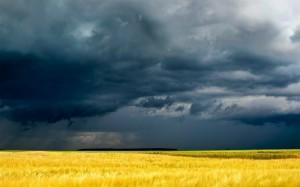 До четверга в Украине продержится прохладная погода
