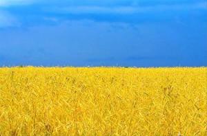 флаг-Украины-300x198 Измаил готовится к праздникам