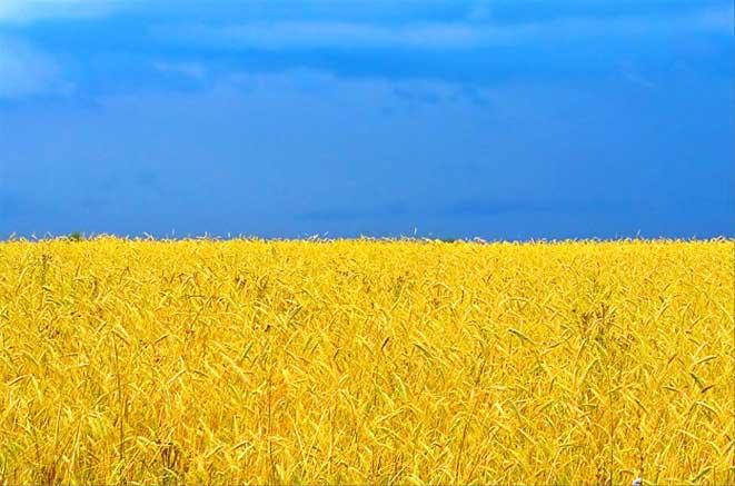 флаг-Украины Население Украины продолжает сокращаться