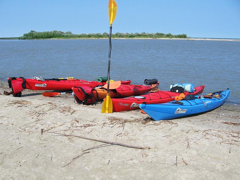 zayak-zapluv-izmail-vilkovo-7 3 дня на Дунае. Измаильчане на каяках проплыли более 70 км (фоторепортаж)