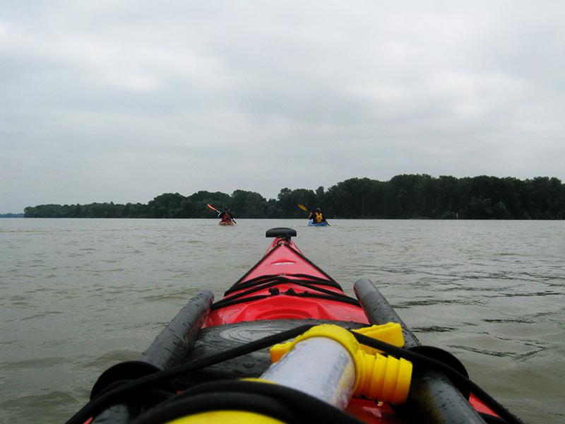 zayak-zapluv-izmail-vilkovo-8 3 дня на Дунае. Измаильчане на каяках проплыли более 70 км (фоторепортаж)