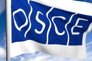 В Измаиле представители ОБСЕ обсудили безопасность с милицией