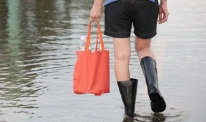 В Бессарабии уровень воды в Дунае превышает норму