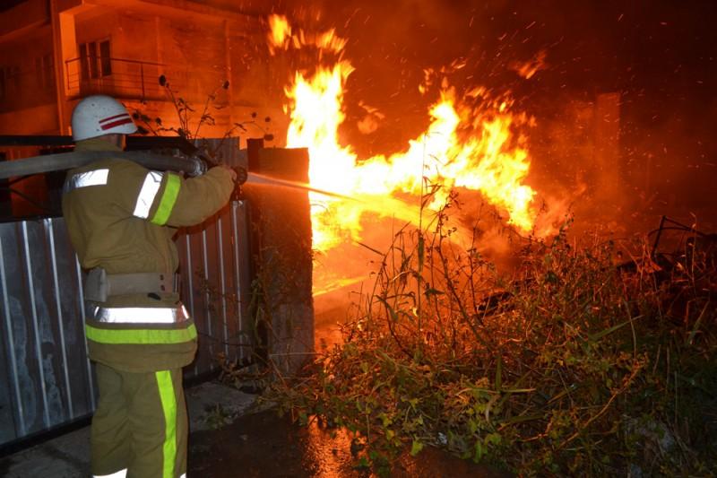 DSC_0010-800x533 В Белгороде-Днестровском районе сгорела база отдыха (фото)