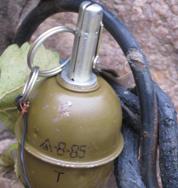 PM821image002 Аккерман: граната у двери рассматривается как покушение на убийство (фото)