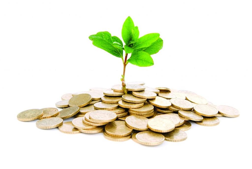 На одного измаильчанина приходится 480,2 грн. капитальных инвестиций
