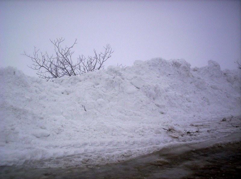25527_main За сутки спасатели освободили из снежного плена более 3500 машин