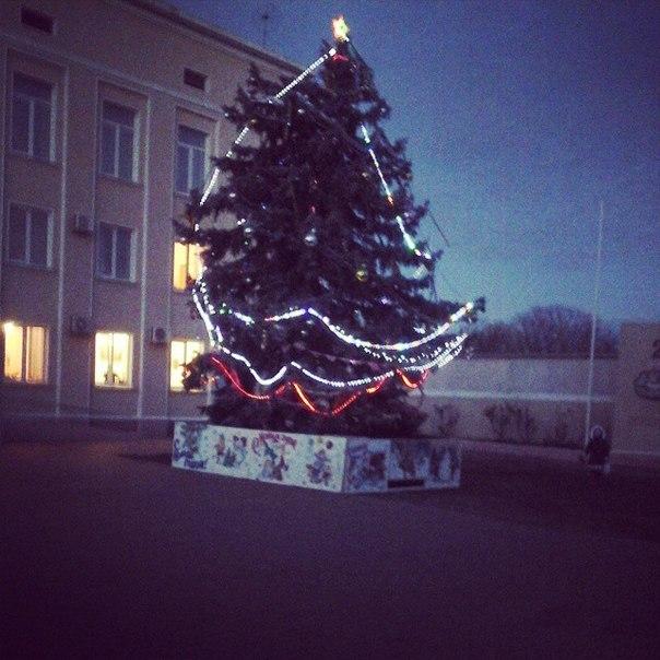 ФОТОфакт: Елка в Белгороде-Днестровском - шик и блеск