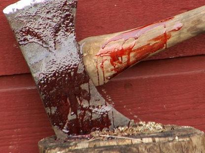 топор-в-крови-12345-thumb-416x249-18253 В Болградском районе гость зарубил хозяина топором