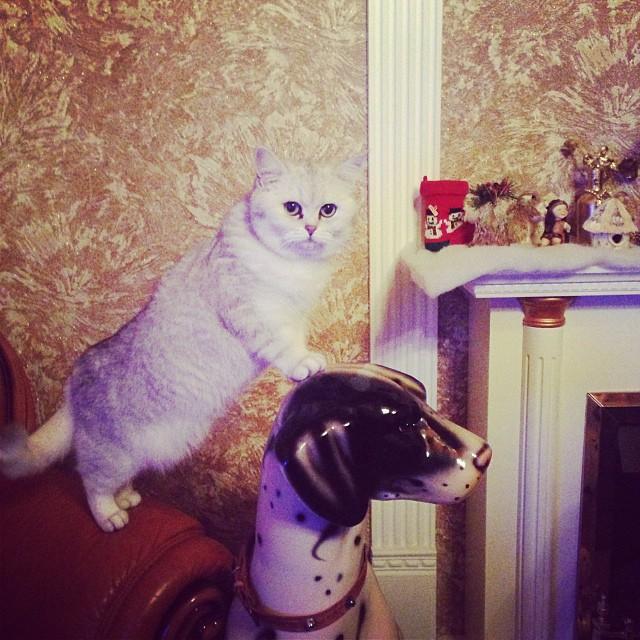 28 Новогодняя ночь: Что публиковали Измаильчане в Instagram (фото)