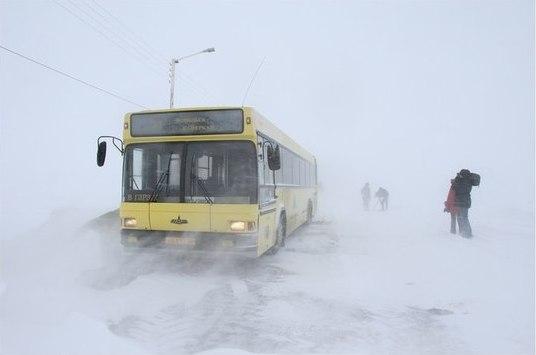 782 На каких дорогах в Бессарабии  все еще затруднен проезд