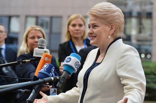 Президент Литвы яростнее всех в мире отстаивает позиции Украины