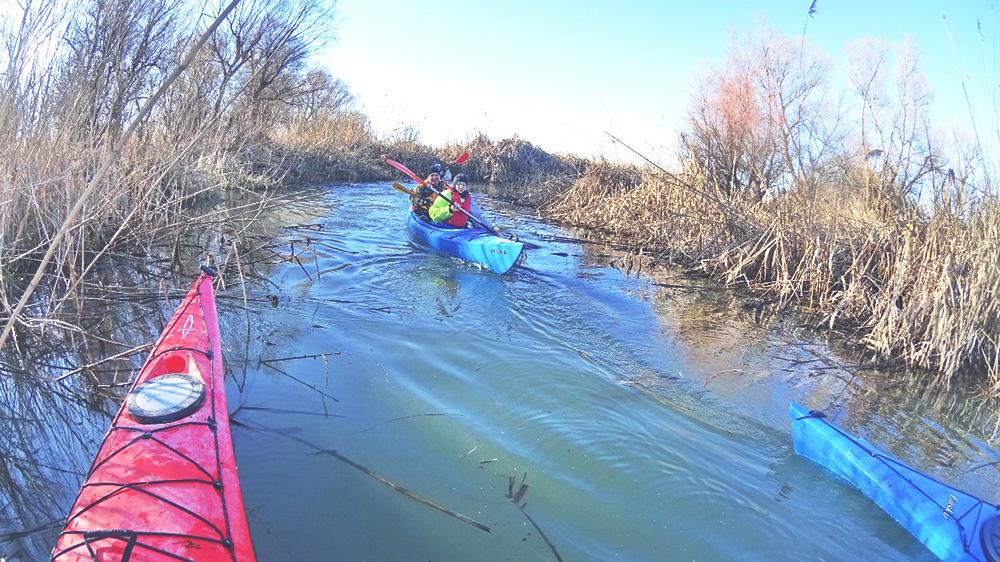 kayak-po-dunay-2 Активный выходной в Измаиле - в путь на каяках (фото)